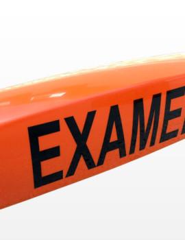 caseta-examen-1